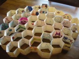 Picture of completed Honeycomb project